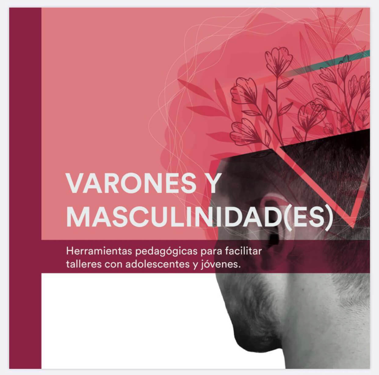 Varones y masculinidades